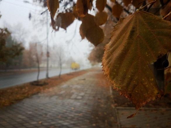 Тумани: на Черкащині погода лишається без змін