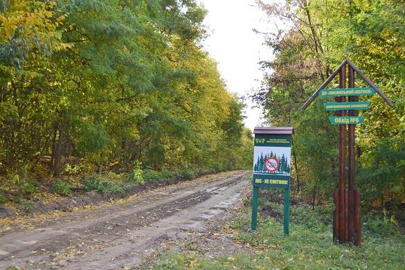Черкаські лісівники облаштували 6 кілометрів лісової дороги