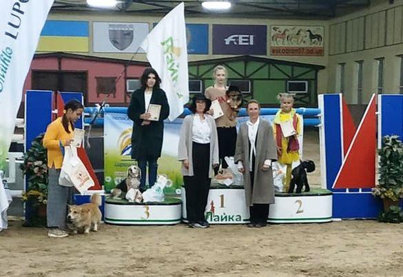 Разом з чотирилапим: на Черкащині перша спортсменка з аджиліті отримала перемогу на змаганнях