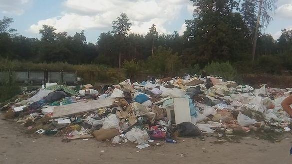 У Руській Поляні розповіли, як боротимуться з несанкціонованими сміттєзвалищами