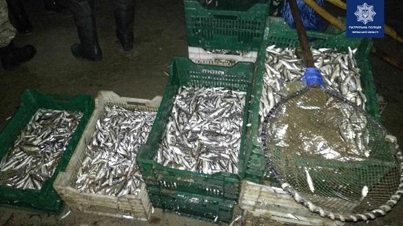 На Черкащині бракон'єри завдали мільйонних збитків державі