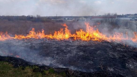 Уманські рятувальники чотири рази гасили пожежі на відкритих територіях