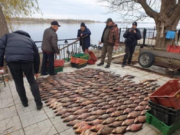 У Черкаській області бракон'єри виловлювали рибу в забороненому місці