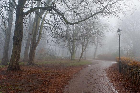 Синоптики знову попереджають про туман