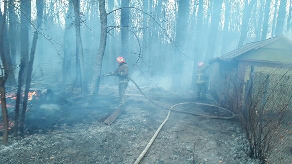 Рятувальникам на Черкащині вдалося приборкати 4 пожежі на відкритих територіях