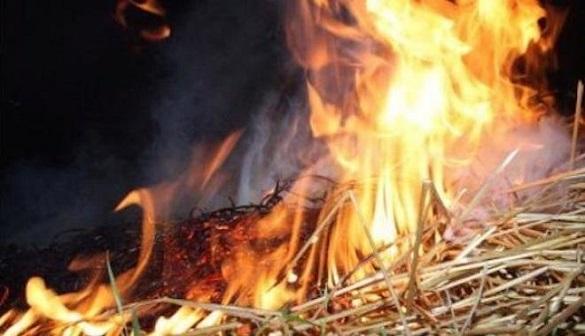 На Черкащині згоріло 500 кілограмів сіна (ВІДЕО)