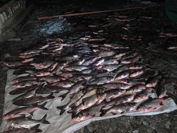 Можуть відкрити кримінальне провадження: на території ландшафтного заказника Черкащини затримали браконьєрів