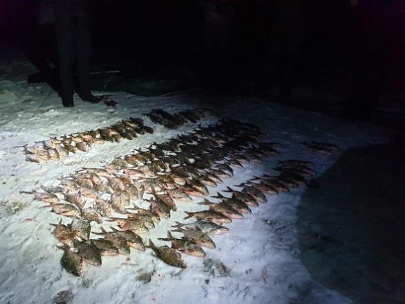У Черкасах бракон'єри виловили риби на понад 22 тисячі гривень (ФОТО)