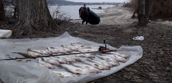 Рибалка-бракон'єр у Черкасах завдав збитків на понад 16 тисяч гривень (ФОТО)