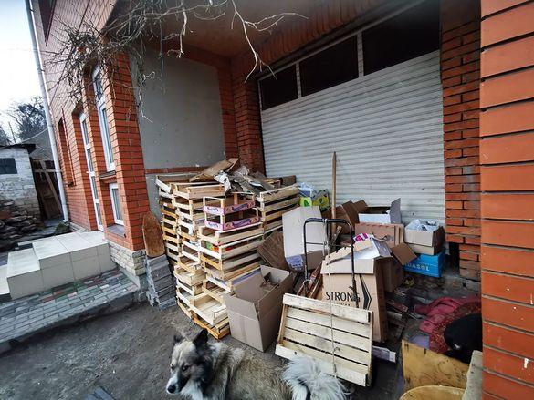 Черкаська пенсіонерка здає макулатуру, щоб прогодувати собак-безхатченків (ФОТО)