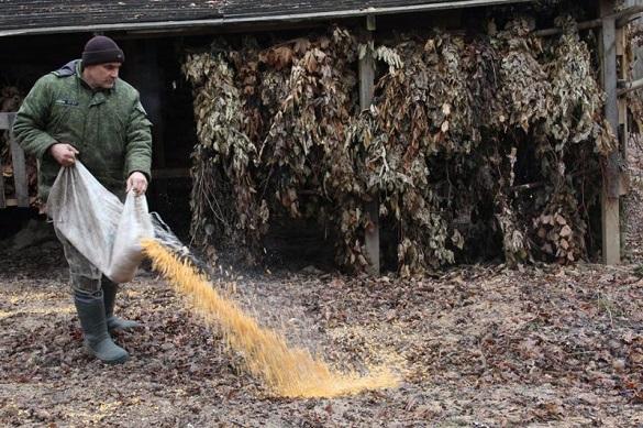 У одному з лісгоспів на Черкащині заготовили для тваринок 17 тон зерна та зерновідходів (ФОТО)