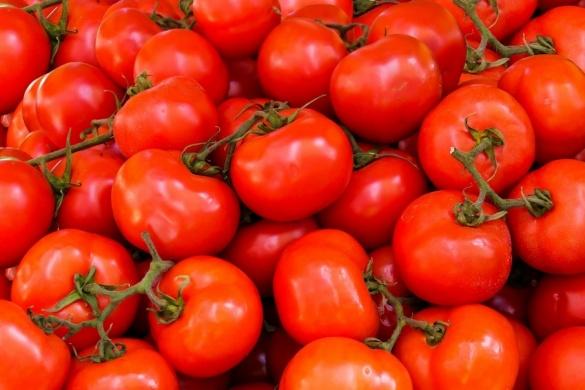 Черкащан мало не нагодували помідорами з міллю