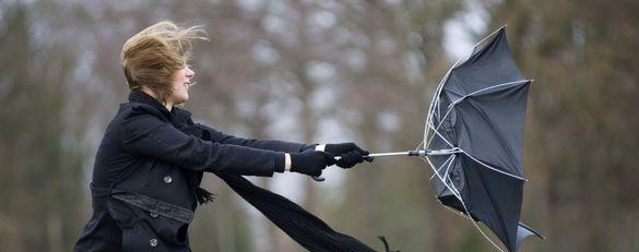 Завтра на Черкащині синоптики попереджають про пориви вітру