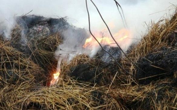 У господарстві на Черкащині згоріло 300 кілограмів соломи
