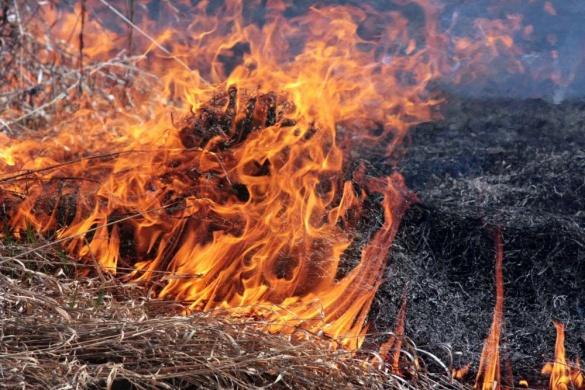 За добу в екосистемах Черкаської області виникло 2 пожежі