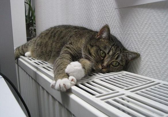 Мешканці однієї багатоповерхівки у Черкасах отримують захмарні платіжки за тепло (ВІДЕО)