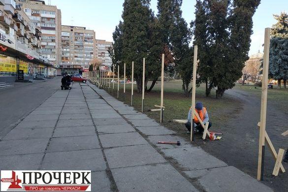 У черкаському сквері обіцяють створити найбільший в Україні сад магнолій