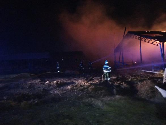 Майже сто тонн сіна згоріло на Черкащині (ФОТО)