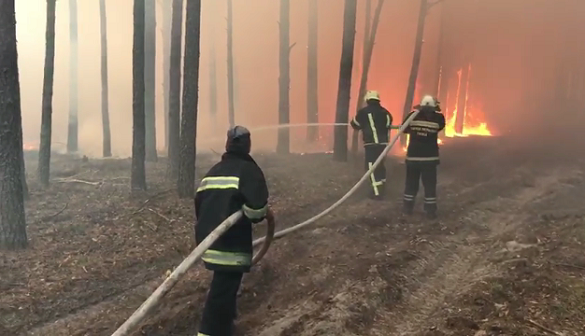 Тридцять черкаських рятувальників допомагають ліквідувати масштабну пожежу лісу в Житомирській області (ВІДЕО)