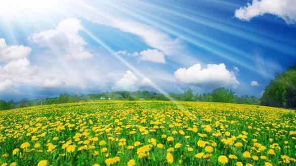 Завтра на Черкащині очікується тепла та суха погода