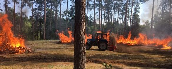 Лісівники та рятувальники гасили умовну лісову пожежу під Черкасами (ВІДЕО)