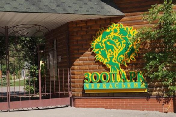 Черкаський зоопарк змінює графік роботи